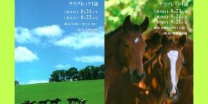 2017サマーセール・獣医検査のお知らせ