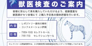 2018セレクトセール&セレクションセール・獣医検査のお知らせ
