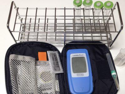 育成馬の乳酸値測定